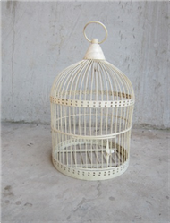 drilled bird cage